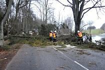 Popadané stromy přes silnici.