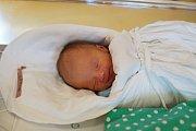 DAVID MALINSKÝ Narodil se 16. října 2018 2018 v liberecké porodnici mamince Andree Malinské z Hejnic. Vážil 2,80 kg a měřil 50 cm.