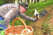 I když letošní úroda hub byla chudší, mykologové vždy něco v lese uloví.