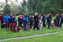 O LIBERECKÝ POHÁR bojovalo v pavlovickém areálu téměř padesát psů.