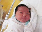 HOANG TU NGUYEN Narodil se 22. února v liberecké porodnici mamince Quyen Doan Thuc z Liberce. Vážil 4,08 kg a měřil 51 cm.