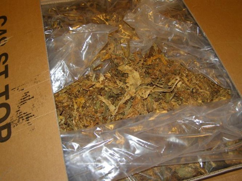 Policie zadržela gang, který obchodoval s naftou a cigaretami