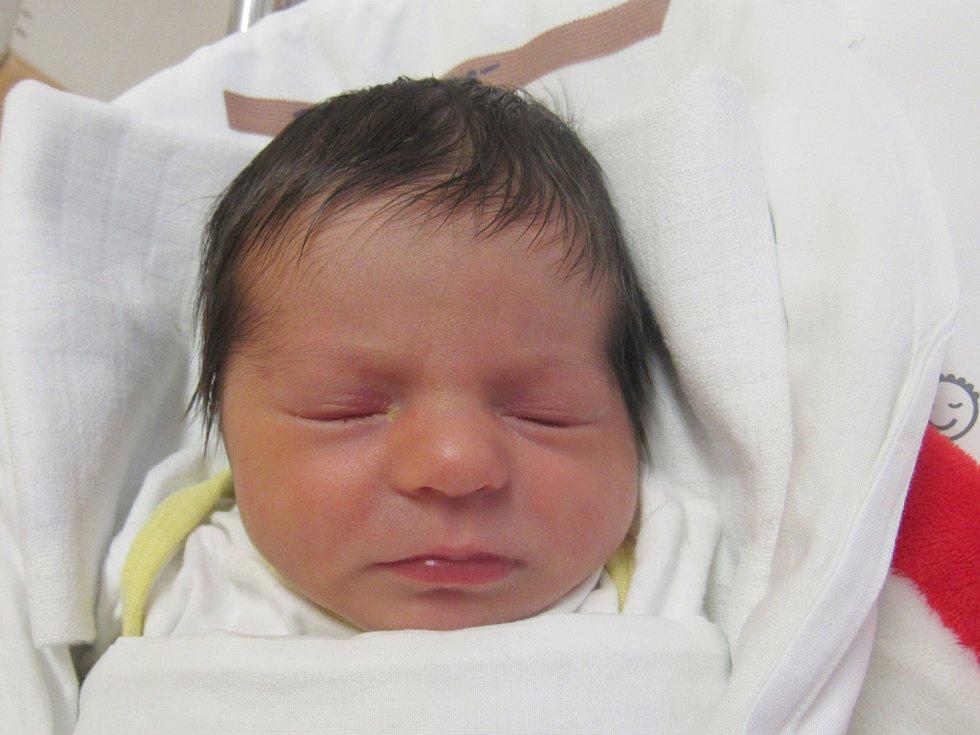 TEREZA DALECKÁ Narodila se 6. března 2018 v liberecké porodnici mamince Janě Dalecké z Liberce. Vážila 2,40 kg a měřila 48 cm.