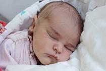 Rodičům Lucii Domažlické a Radku Linhartovi z Jablonného v Podještědí se v pondělí 17. února ve 20:42 hodin narodila dcera Lucie Linhartová. Měřila 48 cm a vážila 3,77 kg.