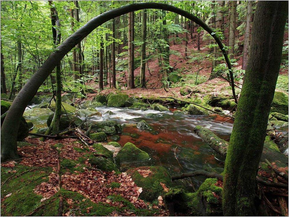 Brána na Černém potoku