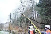 HASIČI MAJÍ plné ruce práce s polámanými stromy, ale také s nehodami. Stromy padají na silnice, některé i na elektrické vedení.