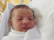ANDREA LECKÁ Narodila se 1. srpna v liberecké porodnici mamince Katrin Lecké z Hejnic. Vážila 3,38 kg a měřila 48 cm.