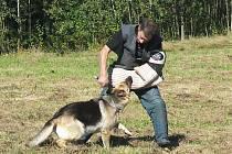 Během sobotní neziskové akce se mohla široká veřejnost přesvědčit o tom, že vycvičený pes není nebezpečný svém u okolí.