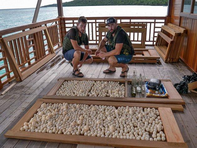 Vbřeznu se podařilo pracovníkům zoo ve spolupráci sjednotkou Indonéského námořnictva dopadnout loď sšestičlennou posádkou pytláků.