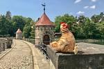 Slepičí tour v Libereckém kraji.