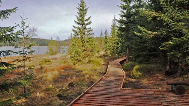 PRO PĚŠÍ, KOČÁRKY I VOZÍČKÁŘE. Dřevěný chodník podél Černé Nisy nabízí i vyhlídky. Je také součástí nové stezky.