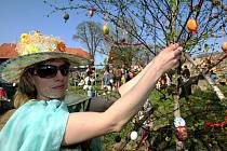 Vajíčkovník v Dolní Řásnici - 2009.