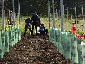 Škola ve Frýdlantu mění nevyužité pozemky