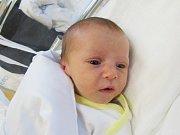 ALEX ČÁLIK  Narodil se 2. ledna v liberecké porodnici mamince Andree Čálikové z Liberce.  Vážil 3,08 kg a měřil 50 cm.