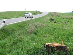 TŘEŠŇOVÁ ALEJ, která lemovala silnici z Frýdlantu, je minulostí.
