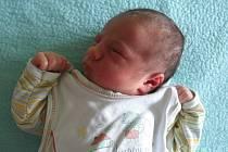 Marek Fanta se narodil Haně a Miroslavovi  Fantovým z Nových Kopist 12.7. v 18:57 hodin  v Litoměřicích (48 cm a 3,11 kg).