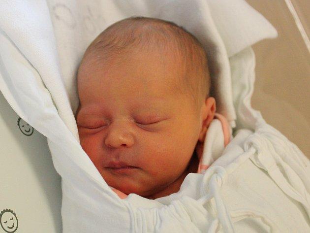 ADÉLA GRUNOVÁ Narodila se 2. května v liberecké porodnici mamince Evě Grunové z Liberce. Vážila 2,67 kg a měřila 47 cm.