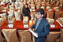 Do devětasedmdesáti libereckých okrsků (bez Vratislavic nad Nisou) v pátek rozvezou úředníci magistrátu pytle a krabice s náhradními volebními lístky, listinami a dalšími dokumenty, nezbytnými pro zdařilý chod voleb do Evropského parlamentu.