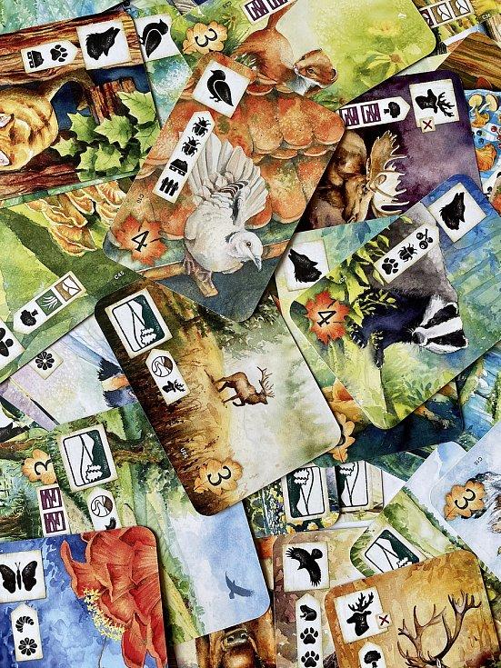 David Rott stvořil projekt s názvem Deskárna.