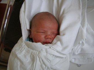 Jan Urbánek se narodil 16. května v liberecké porodnici mamince Janě Urbánkové z Liberce. Vážil 3,6 kg a měřil 51 cm.