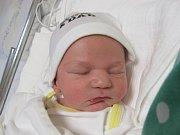 ADAM HOBL Narodil se 22. listopadu v liberecké porodnicimamince Lence Hoblovéz Liberce. Vážil 3,69 kg a měřil 52 cm.
