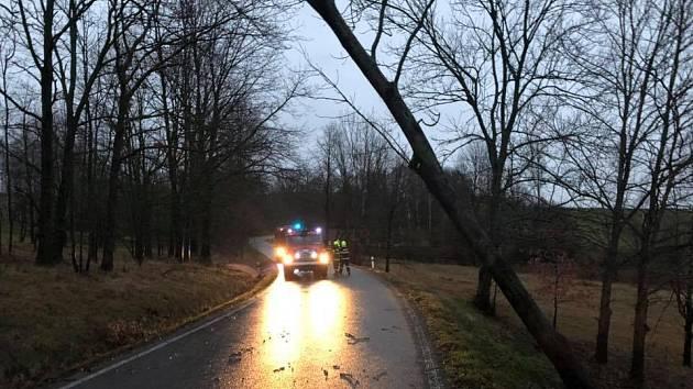 Hasiči z Hrádku nad Nisou, Chrastavy a Liberce zasahovali v pondělí ráno u vyvrácených stromů ve Václavicích.