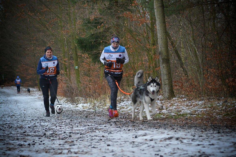 Silvestrovský běh 2019 v Liberci.
