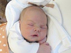EMMA TRYTKOVÁ Narodila se 16. března 2018 v liberecké porodnici rodičům Michaele Drbohlavové a Pavlu Trytkovi z Liberce. Vážila 3,84 kg a měřila 52 cm.