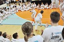 MLADÁ CAPOEIRA. Bojové umění z Brazílie má řadu příznivců zejména mezi mladými. V Jablonci se uskutečnilo již sedmé mistrovství republiky.