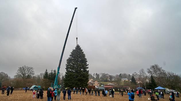 Vánoční strom pro Prahu pocházel z Libereckého kraje i v loňském roce.