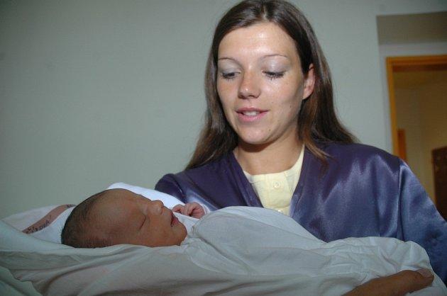 Pocta mateřství