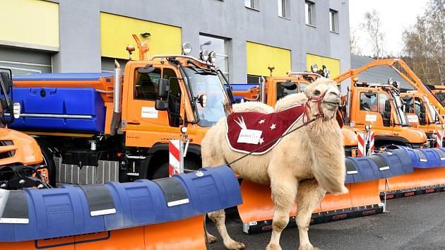 Údržbu krajských silnic posílí šest nových strojů a jeden velbloud.