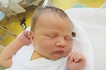 VOJTA LOCHMAN Narodil se 4. září v liberecké porodnici mamince Evě Lochmanové z Liberce. Vážil 4,03 kg a měřil 52 cm.