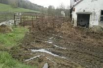 Příjezdová cesta k výběhu nad kravínem.