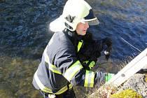 Hasiči zachránili psa z koryta Lužické Nisy.