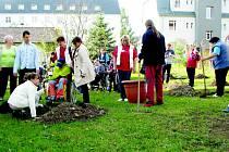 SLAVNOSTNÍ SETKÁNÍ proběhlo na zahradě budovy H v pátek dopoledne. Zúčastnili se ho jak zaměstnanci ústavu, tak jejich klienti, kteří se zapojili i do sázení stromů.