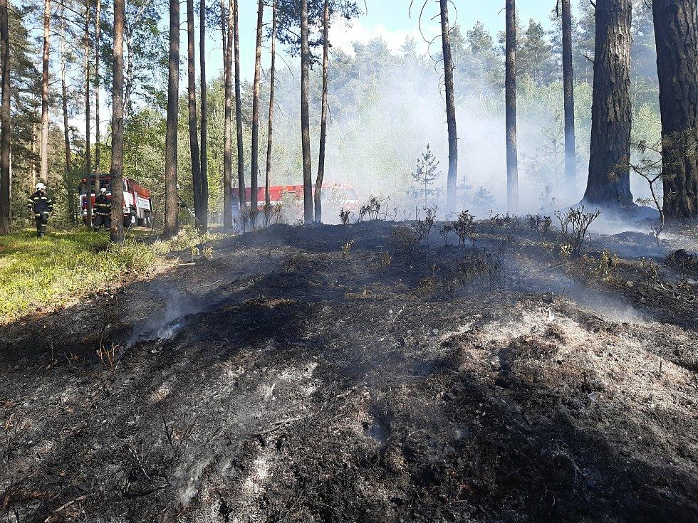 Hasiči likvidovali požáry v lesích na Českolipsku a Jablonecku.
