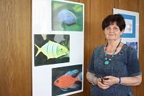 V Libereckém kraji běží už třetím rokem Akademie 55+, kde se senioři pod vedením kvalifikovaných odborníků učí hudbě, tanci nebo výtvarnému umění. Zájem o projekt je obrovský, zatím běží na čtyřech místech. Ilustrační foto.