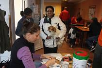 V DENNÍM STŘEDISKU Naděje si díky akci Veterinářů bez hranic mohli lidé bez domova nechat naočkovat psy.