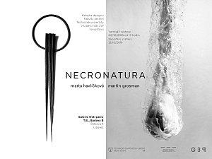 Výstava NECRONATURA.