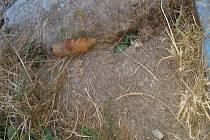 U liberecké přehrady nalezl dělostřelecký granát.