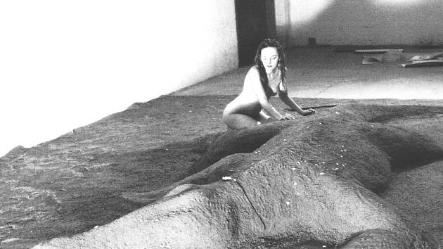 KROKODÝL. Dvacetimetrová instalace z písku (reminiscence na krokodýla) Radky Chocholoušové na bienále Nová média v Chebu v roce 2003.