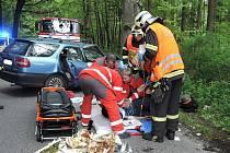 Hasiči byli povoláni k dopravní nehodě, při které auto narazilo do stromu.