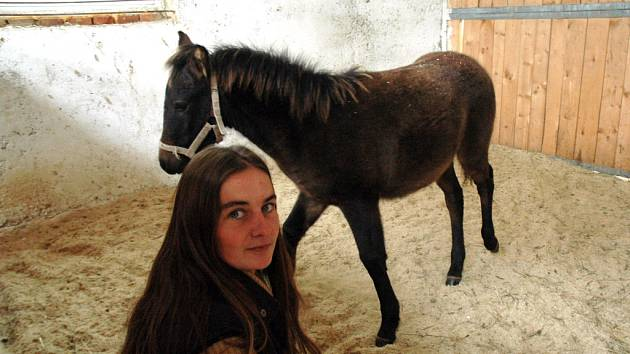 Majitelce koňského domova důchodců Zuzaně Polákové (na snímku) se nakonec podařilo vybudovat provizorní stáje pro svá zvířata.
