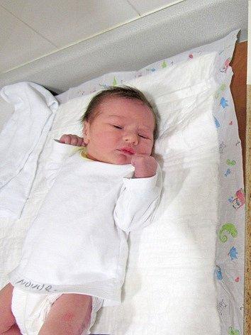 TOMÁŠ HANZAL Narodil se 10. května v liberecké porodnici mamince Heleně Hanzalové z Liberce. Vážil 3,30 kg a měřil 50 cm.