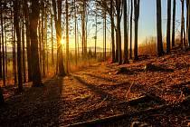Západ slunce po Špičákem.