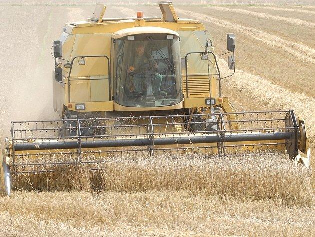 Díky zlepšenému počasí mohou do polí opět vyjet kombajny. Zemědělci však mají při sklizni značné zpoždění.