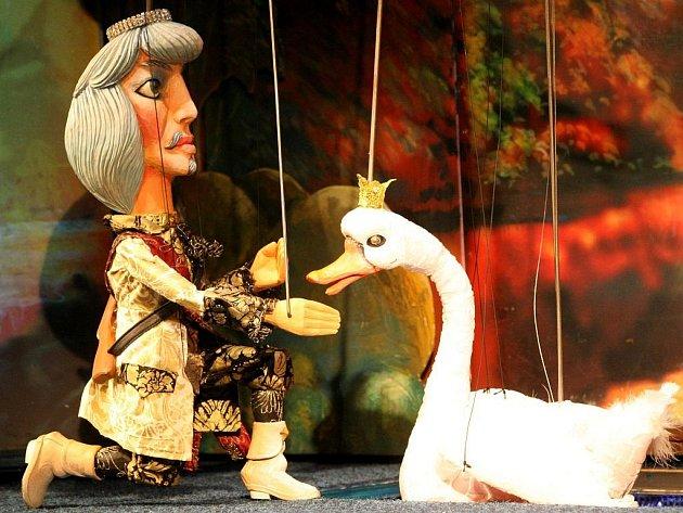 STANE SE LABUŤ SNACHOU KRÁLOVNY? Princi se do ženění nechce. Zamiloval se totiž beznadějně do labutě.
