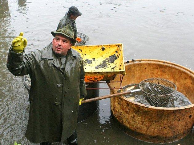 Výlov Pivovarského rybníku pod Lemberkem vynesl rybářům deset metráků kaprů. Podle ředitele Rybářství Lvová čekali větší množství. Na likvidaci karů ještě před výlovem rybníku se podepsali kormoráni. Raritním úlovkem je čtrnáctikilový bílý sumec.