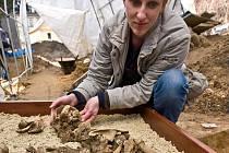 Kostra, kterou našli archologové našli v ulici Kostelní v Hrádku nad Nisou.